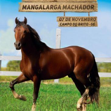 I – COPA DE MARCHA DO CAVALO MANGALARGA MARCHADOR DE SERGIPE