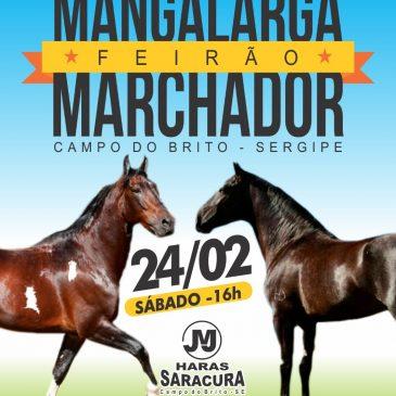 Feirão Mangalarga Machador 2018