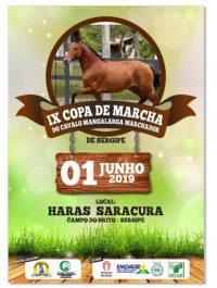 IX Copa do Marcha do Cavalo Mangalarga Marchador de Sergipe