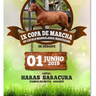 IX Copa do Marcha do Cavalo Mangalarga Marchador
