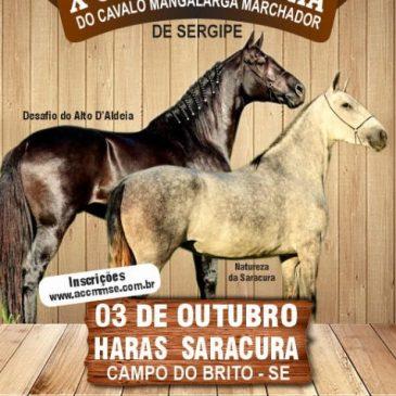X Copa de Marcha do Cavalo Mangalarga Marchador de Sergipe