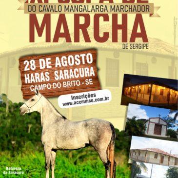 XI Copa de Marcha do Cavalo Mangalarga Marchador de Sergipe